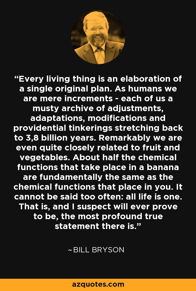 Every living thing is an elaboration of a single original plan. As humans we are mere increments - each of us a musty archive of adjustments, adaptations, modifications and providential tinkerings stretching back to 3,8 billion years. Remarkably we are even quite closely related to fruit and vegetables. About half the chemical functions that take place in a banana are fundamentally the same as the chemical functions that place in you. It cannot be said too often: all life is one. That is, and I suspect will ever prove to be, the most profound true statement there is. - Bill Bryson
