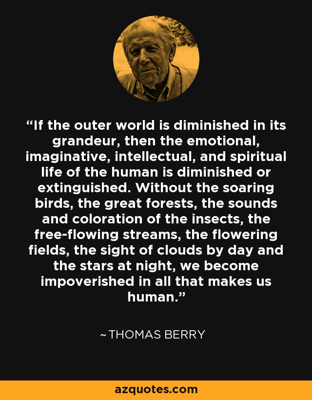 If the outer world is diminished in its grandeur, then the emotional, imaginative, intellectual, and spiritual life of the human is diminished or extinguished. Without the soaring birds, the great forests, the sounds and coloration of the insects, the free-flowing streams, the flowering fields, the sight of clouds by day and the stars at night, we become impoverished in all that makes us human. - Thomas Berry