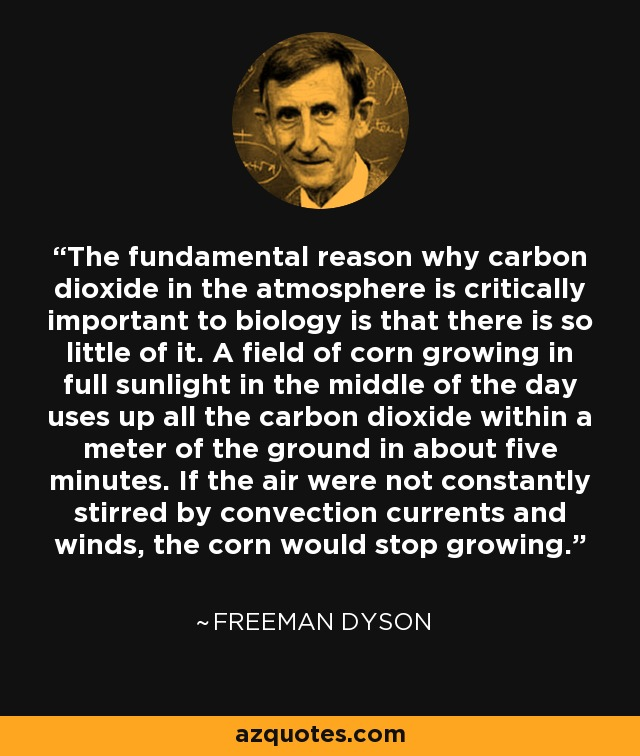 The fundamental reason why carbon dioxide in the atmosphere is critically important to biology is that there is so little of it. A field of corn growing in full sunlight in the middle of the day uses up all the carbon dioxide within a meter of the ground in about five minutes. If the air were not constantly stirred by convection currents and winds, the corn would stop growing. - Freeman Dyson