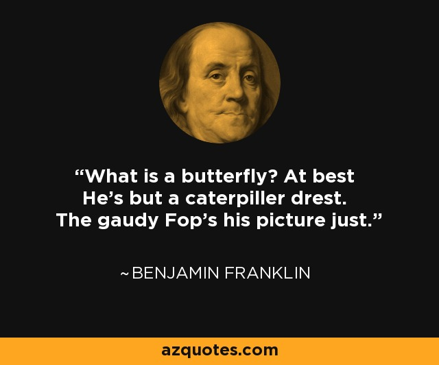 What is a butterfly? At best He's but a caterpiller drest. The gaudy Fop's his picture just. - Benjamin Franklin