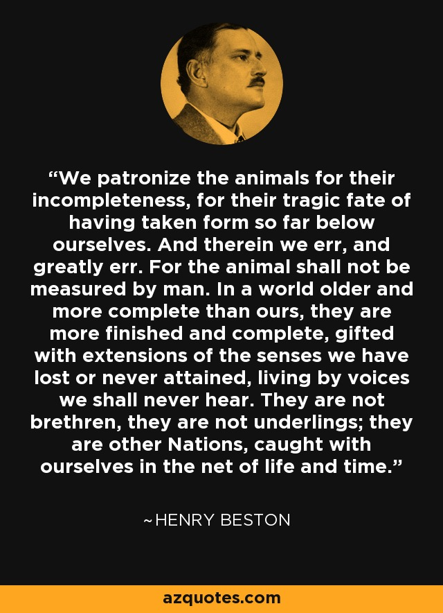 We patronize the animals for their incompleteness, for their tragic fate of having taken form so far below ourselves. And therein we err, and greatly err. For the animal shall not be measured by man. In a world older and more complete than ours, they are more finished and complete, gifted with extensions of the senses we have lost or never attained, living by voices we shall never hear. They are not brethren, they are not underlings; they are other Nations, caught with ourselves in the net of life and time. - Henry Beston