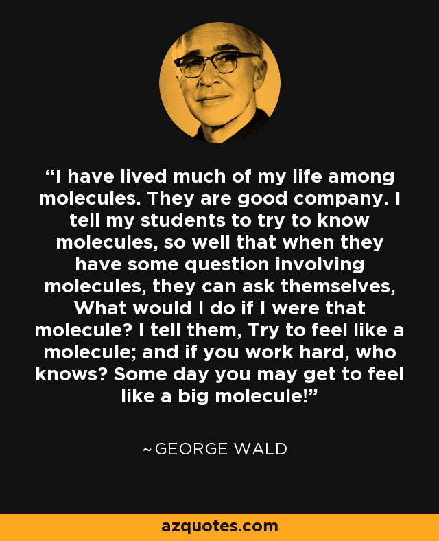 I have lived much of my life among molecules. They are good company. I tell my students to try to know molecules, so well that when they have some question involving molecules, they can ask themselves, What would I do if I were that molecule? I tell them, Try to feel like a molecule; and if you work hard, who knows? Some day you may get to feel like a big molecule! - George Wald