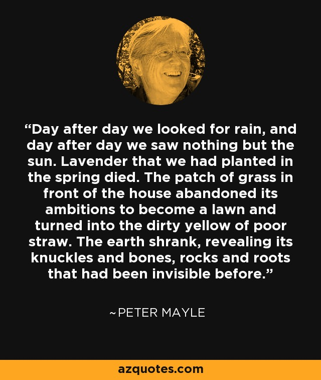 Day after day we looked for rain, and day after day we saw nothing but the sun. Lavender that we had planted in the spring died. The patch of grass in front of the house abandoned its ambitions to become a lawn and turned into the dirty yellow of poor straw. The earth shrank, revealing its knuckles and bones, rocks and roots that had been invisible before. - Peter Mayle