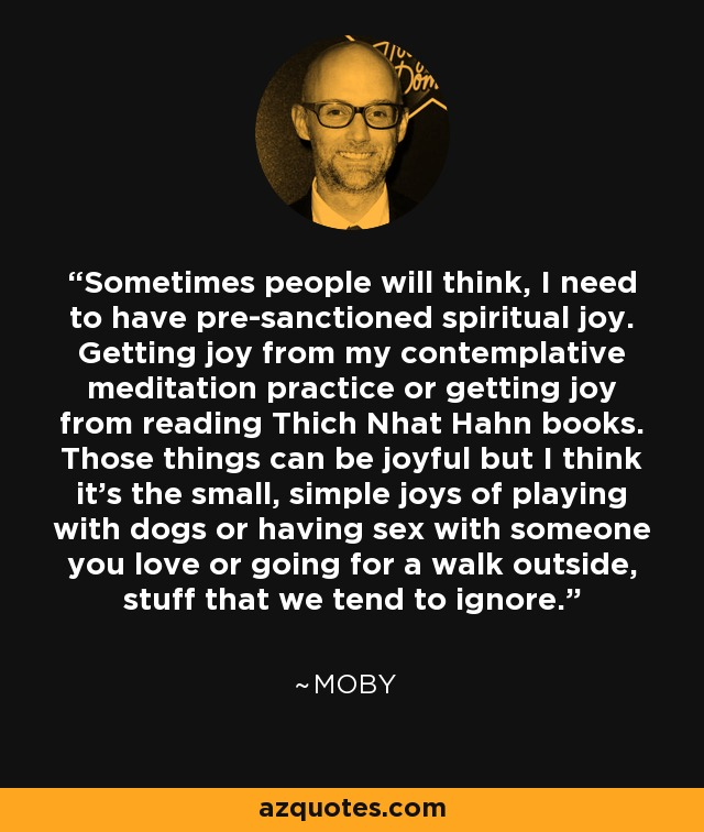 Sometimes people will think, I need to have pre-sanctioned spiritual joy. Getting joy from my contemplative meditation practice or getting joy from reading Thich Nhat Hahn books. Those things can be joyful but I think it's the small, simple joys of playing with dogs or having sex with someone you love or going for a walk outside, stuff that we tend to ignore. - Moby