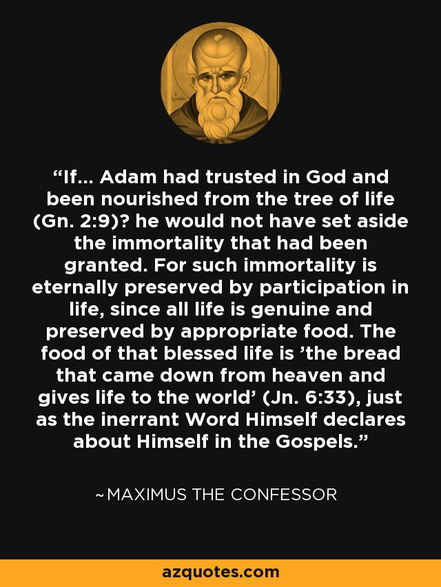 If... Adam had trusted in God and been nourished from the tree of life (Gn. 2:9)? he would not have set aside the immortality that had been granted. For such immortality is eternally preserved by participation in life, since all life is genuine and preserved by appropriate food. The food of that blessed life is 'the bread that came down from heaven and gives life to the world' (Jn. 6:33), just as the inerrant Word Himself declares about Himself in the Gospels. - Maximus the Confessor