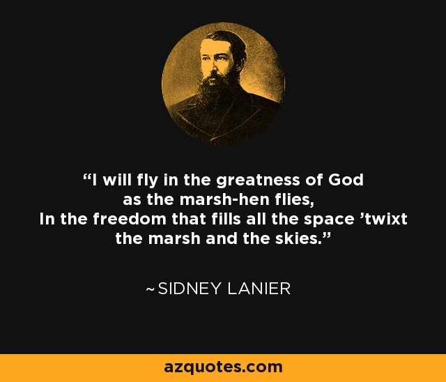 I will fly in the greatness of God as the marsh-hen flies, In the freedom that fills all the space 'twixt the marsh and the skies. - Sidney Lanier