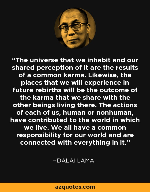 The universe that we inhabit and our shared perception of it are the results of a common karma. Likewise, the places that we will experience in future rebirths will be the outcome of the karma that we share with the other beings living there. The actions of each of us, human or nonhuman, have contributed to the world in which we live. We all have a common responsibility for our world and are connected with everything in it. - Dalai Lama