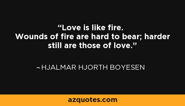 Love is like fire. Wounds of fire are hard to bear; harder still are those of love. - Hjalmar Hjorth Boyesen