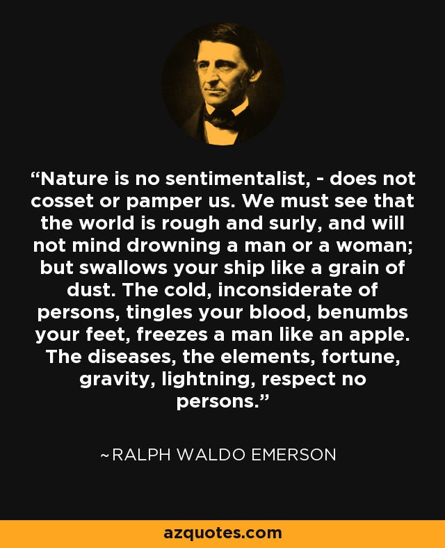 emerson essay nature