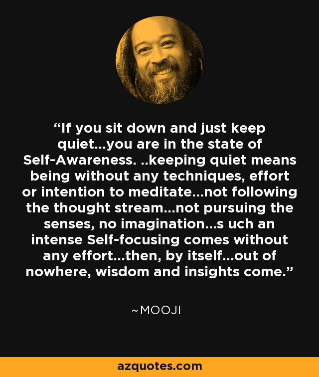 If you sit down and just keep quiet...you are in the state of Self-Awareness. ..keeping quiet means being without any techniques, effort or intention to meditate...not following the thought stream...not pursuing the senses, no imagination...s uch an intense Self-focusing comes without any effort...then, by itself...out of nowhere, wisdom and insights come. - Mooji