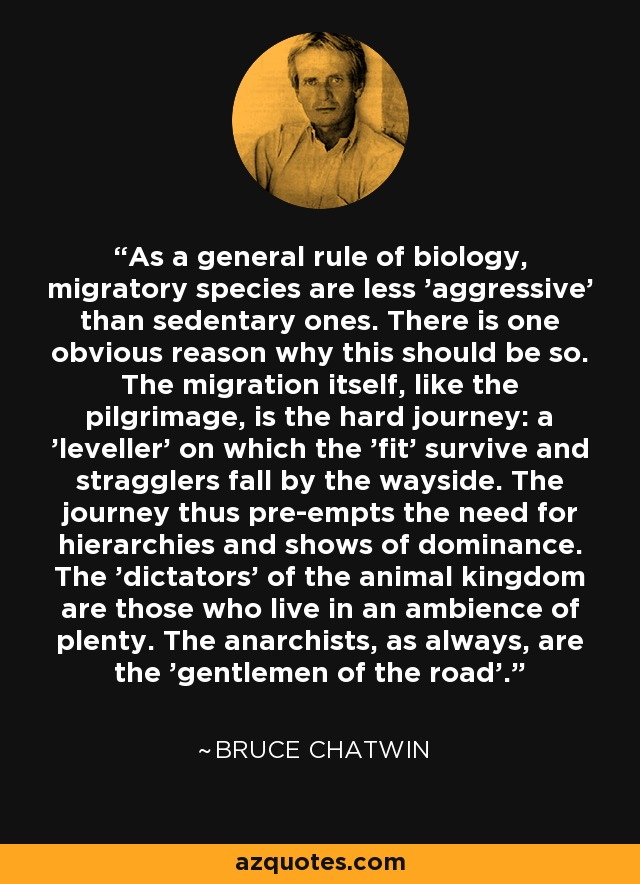 As a general rule of biology, migratory species are less 'aggressive' than sedentary ones. There is one obvious reason why this should be so. The migration itself, like the pilgrimage, is the hard journey: a 'leveller' on which the 'fit' survive and stragglers fall by the wayside. The journey thus pre-empts the need for hierarchies and shows of dominance. The 'dictators' of the animal kingdom are those who live in an ambience of plenty. The anarchists, as always, are the 'gentlemen of the road'. - Bruce Chatwin