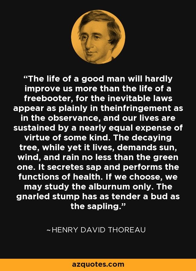 The life of a good man will hardly improve us more than the life of a freebooter, for the inevitable laws appear as plainly in theinfringement as in the observance, and our lives are sustained by a nearly equal expense of virtue of some kind. The decaying tree, while yet it lives, demands sun, wind, and rain no less than the green one. It secretes sap and performs the functions of health. If we choose, we may study the alburnum only. The gnarled stump has as tender a bud as the sapling. - Henry David Thoreau