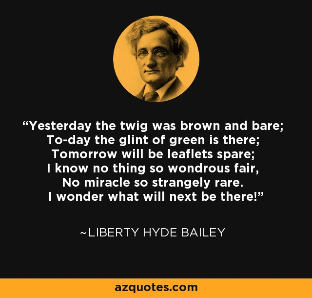 Yesterday the twig was brown and bare; To-day the glint of green is there; Tomorrow will be leaflets spare; I know no thing so wondrous fair, No miracle so strangely rare. I wonder what will next be there! - Liberty Hyde Bailey