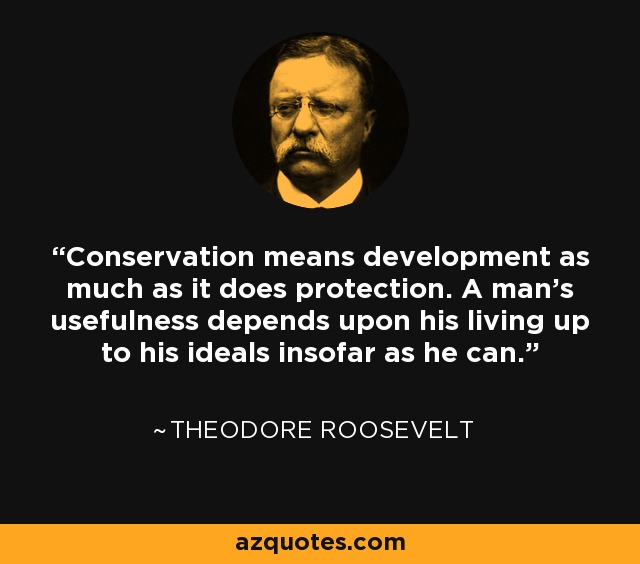 Conservation means development as much as it does protection. A man's usefulness depends upon his living up to his ideals insofar as he can. - Theodore Roosevelt