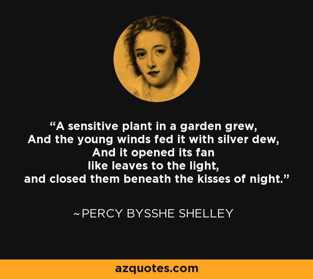 A sensitive plant in a garden grew, And the young winds fed it with silver dew, And it opened its fan like leaves to the light, and closed them beneath the kisses of night. - Percy Bysshe Shelley