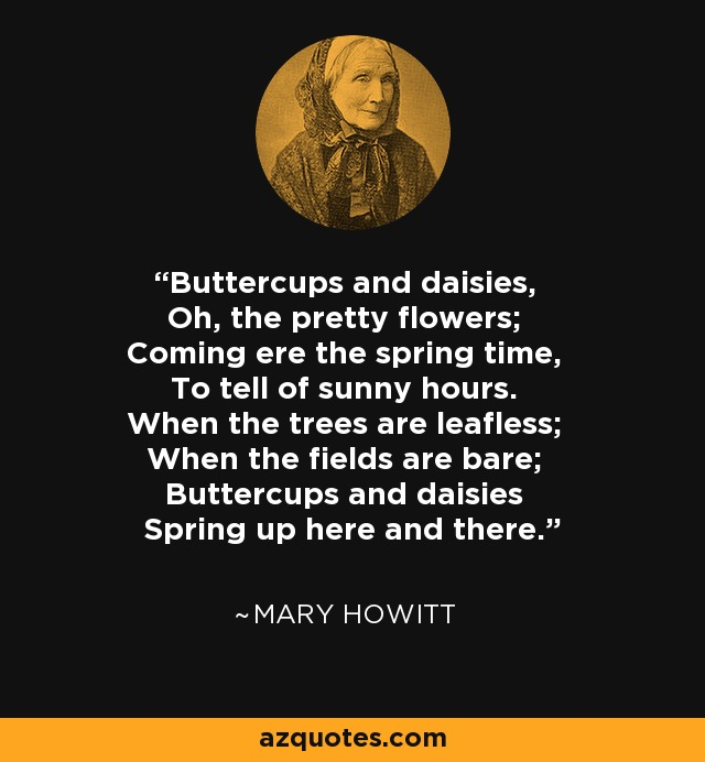 Buttercups and daisies, Oh, the pretty flowers; Coming ere the spring time, To tell of sunny hours. When the trees are leafless; When the fields are bare; Buttercups and daisies Spring up here and there. - Mary Howitt