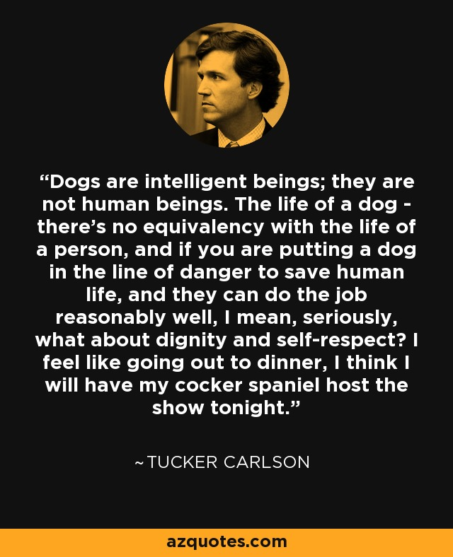 Dogs are intelligent beings; they are not human beings. The life of a dog - there's no equivalency with the life of a person, and if you are putting a dog in the line of danger to save human life, and they can do the job reasonably well, I mean, seriously, what about dignity and self-respect? I feel like going out to dinner, I think I will have my cocker spaniel host the show tonight. - Tucker Carlson