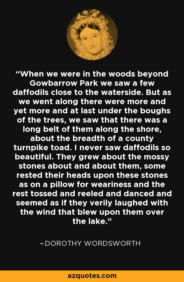 When we were in the woods beyond Gowbarrow Park we saw a few daffodils close to the waterside. But as we went along there were more and yet more and at last under the boughs of the trees, we saw that there was a long belt of them along the shore, about the breadth of a county turnpike toad. I never saw daffodils so beautiful. They grew about the mossy stones about and about them, some rested their heads upon these stones as on a pillow for weariness and the rest tossed and reeled and danced and seemed as if they verily laughed with the wind that blew upon them over the lake. - Dorothy Wordsworth