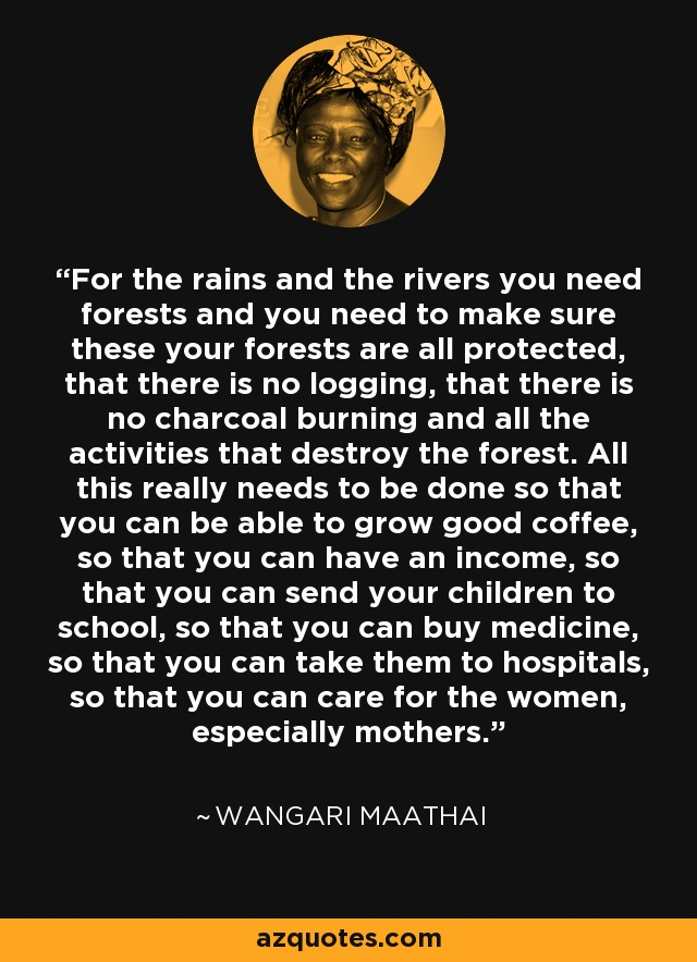 For the rains and the rivers you need forests and you need to make sure these your forests are all protected, that there is no logging, that there is no charcoal burning and all the activities that destroy the forest. All this really needs to be done so that you can be able to grow good coffee, so that you can have an income, so that you can send your children to school, so that you can buy medicine, so that you can take them to hospitals, so that you can care for the women, especially mothers. - Wangari Maathai