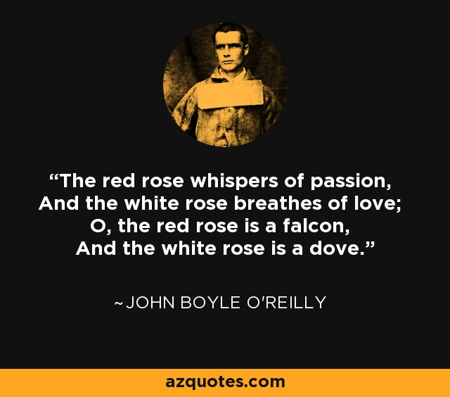 The red rose whispers of passion, And the white rose breathes of love; O, the red rose is a falcon, And the white rose is a dove. - John Boyle O'Reilly
