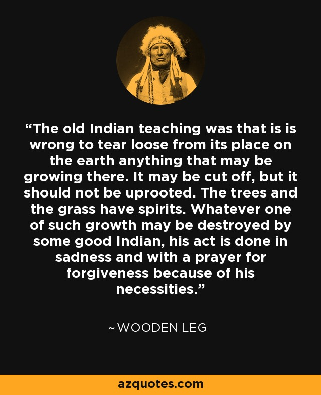 The old Indian teaching was that is is wrong to tear loose from its place on the earth anything that may be growing there. It may be cut off, but it should not be uprooted. The trees and the grass have spirits. Whatever one of such growth may be destroyed by some good Indian, his act is done in sadness and with a prayer for forgiveness because of his necessities. - Wooden Leg