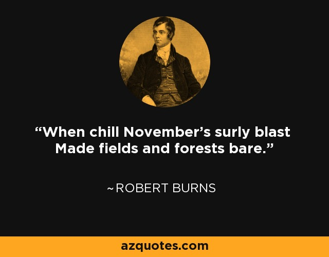 When chill November's surly blast Made fields and forests bare. - Robert Burns