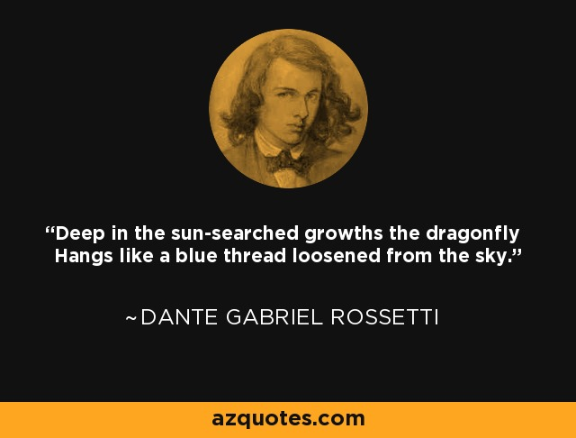 Deep in the sun-searched growths the dragonfly Hangs like a blue thread loosened from the sky. - Dante Gabriel Rossetti