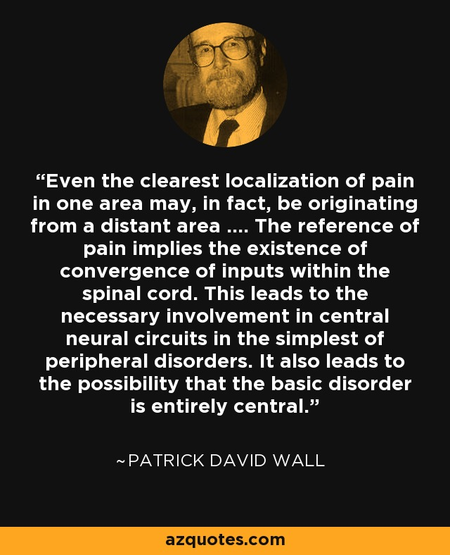 Even the clearest localization of pain in one area may, in fact, be originating from a distant area .... The reference of pain implies the existence of convergence of inputs within the spinal cord. This leads to the necessary involvement in central neural circuits in the simplest of peripheral disorders. It also leads to the possibility that the basic disorder is entirely central. - Patrick David Wall