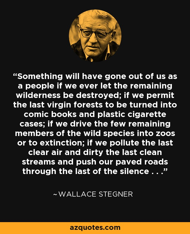 Something will have gone out of us as a people if we ever let the remaining wilderness be destroyed; if we permit the last virgin forests to be turned into comic books and plastic cigarette cases; if we drive the few remaining members of the wild species into zoos or to extinction; if we pollute the last clear air and dirty the last clean streams and push our paved roads through the last of the silence . . . - Wallace Stegner