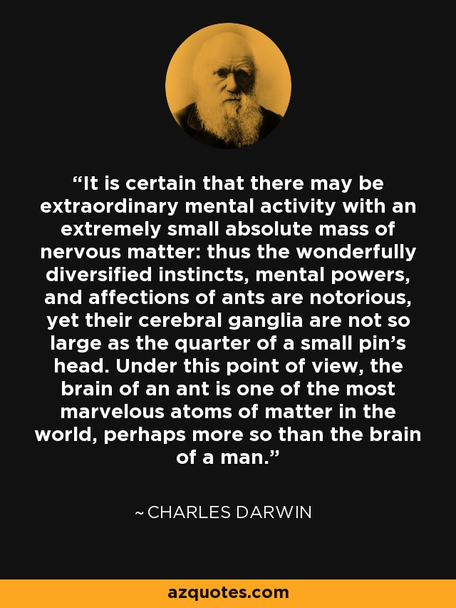 It is certain that there may be extraordinary mental activity with an extremely small absolute mass of nervous matter: thus the wonderfully diversified instincts, mental powers, and affections of ants are notorious, yet their cerebral ganglia are not so large as the quarter of a small pin's head. Under this point of view, the brain of an ant is one of the most marvelous atoms of matter in the world, perhaps more so than the brain of a man. - Charles Darwin