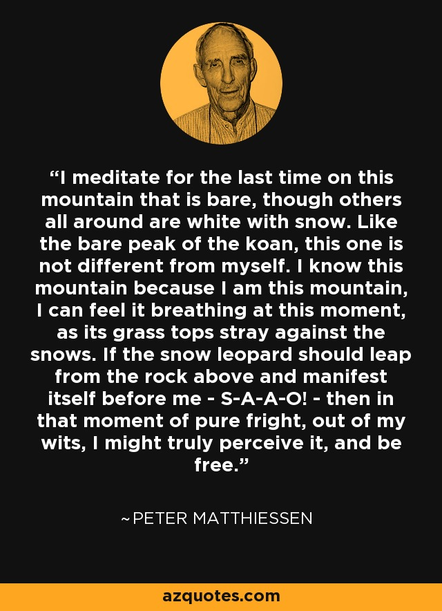 I meditate for the last time on this mountain that is bare, though others all around are white with snow. Like the bare peak of the koan, this one is not different from myself. I know this mountain because I am this mountain, I can feel it breathing at this moment, as its grass tops stray against the snows. If the snow leopard should leap from the rock above and manifest itself before me - S-A-A-O! - then in that moment of pure fright, out of my wits, I might truly perceive it, and be free. - Peter Matthiessen