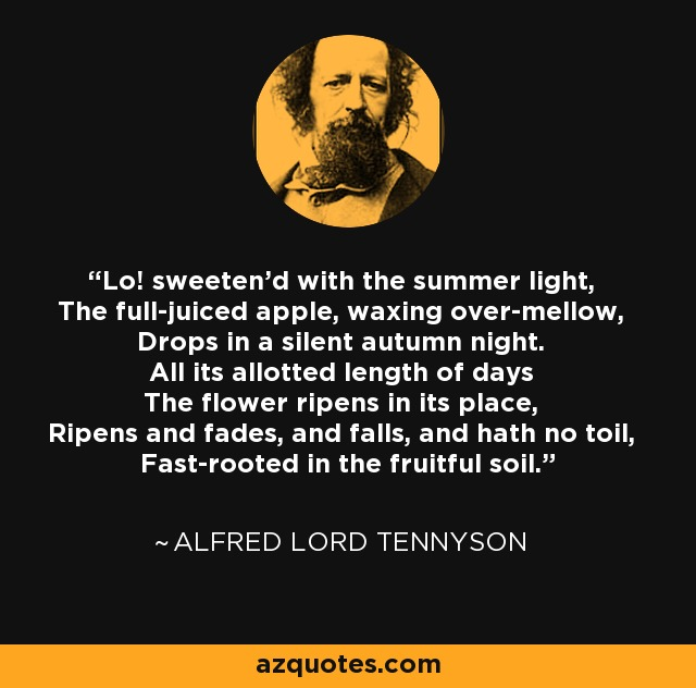 Lo! sweeten'd with the summer light, The full-juiced apple, waxing over-mellow, Drops in a silent autumn night. All its allotted length of days The flower ripens in its place, Ripens and fades, and falls, and hath no toil, Fast-rooted in the fruitful soil. - Alfred Lord Tennyson