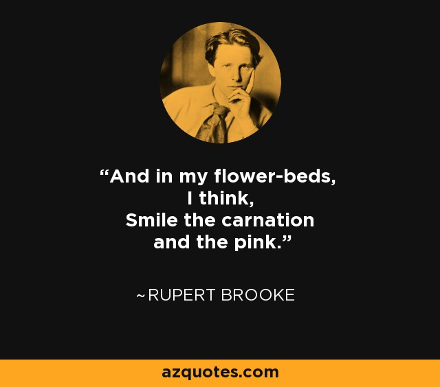 And in my flower-beds, I think, Smile the carnation and the pink. - Rupert Brooke