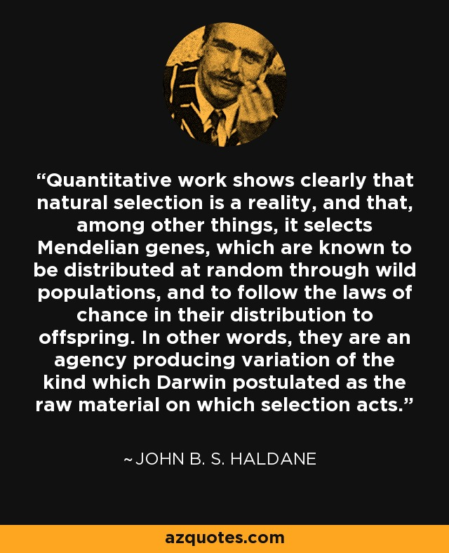 Quantitative work shows clearly that natural selection is a reality, and that, among other things, it selects Mendelian genes, which are known to be distributed at random through wild populations, and to follow the laws of chance in their distribution to offspring. In other words, they are an agency producing variation of the kind which Darwin postulated as the raw material on which selection acts. - John B. S. Haldane