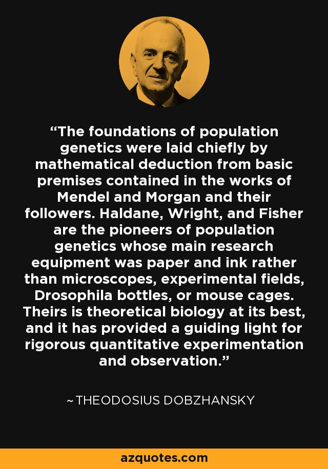 The foundations of population genetics were laid chiefly by mathematical deduction from basic premises contained in the works of Mendel and Morgan and their followers. Haldane, Wright, and Fisher are the pioneers of population genetics whose main research equipment was paper and ink rather than microscopes, experimental fields, Drosophila bottles, or mouse cages. Theirs is theoretical biology at its best, and it has provided a guiding light for rigorous quantitative experimentation and observation. - Theodosius Dobzhansky