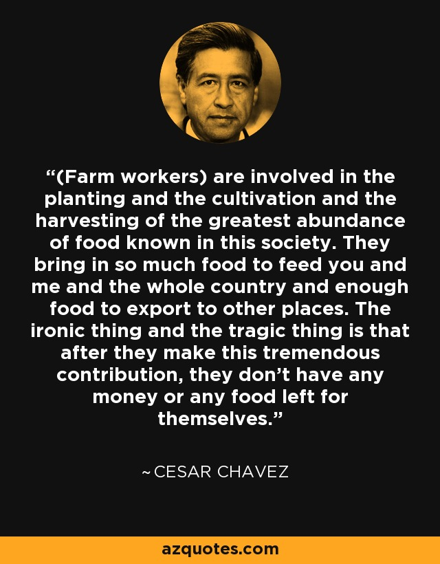 (Farm workers) are involved in the planting and the cultivation and the harvesting of the greatest abundance of food known in this society. They bring in so much food to feed you and me and the whole country and enough food to export to other places. The ironic thing and the tragic thing is that after they make this tremendous contribution, they don't have any money or any food left for themselves. - Cesar Chavez