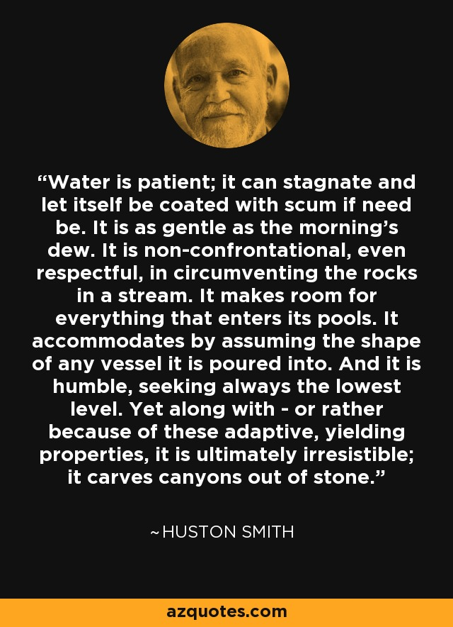 Water is patient; it can stagnate and let itself be coated with scum if need be. It is as gentle as the morning's dew. It is non-confrontational, even respectful, in circumventing the rocks in a stream. It makes room for everything that enters its pools. It accommodates by assuming the shape of any vessel it is poured into. And it is humble, seeking always the lowest level. Yet along with - or rather because of these adaptive, yielding properties, it is ultimately irresistible; it carves canyons out of stone. - Huston Smith