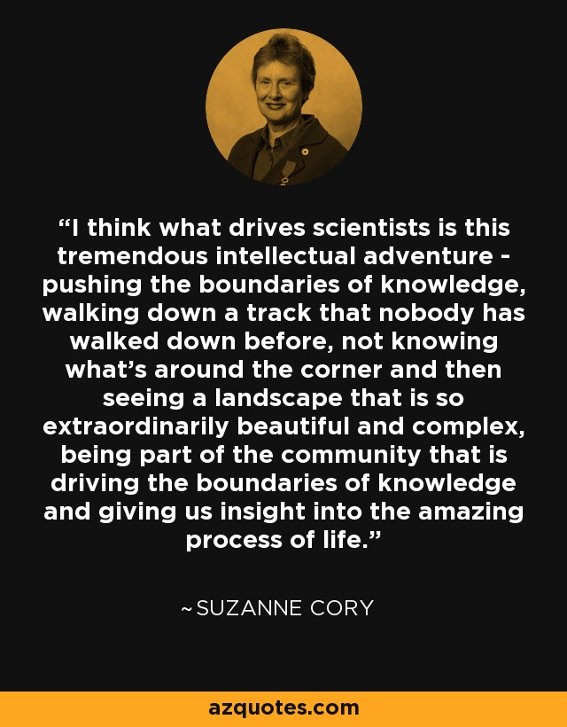 I think what drives scientists is this tremendous intellectual adventure - pushing the boundaries of knowledge, walking down a track that nobody has walked down before, not knowing what's around the corner and then seeing a landscape that is so extraordinarily beautiful and complex, being part of the community that is driving the boundaries of knowledge and giving us insight into the amazing process of life. - Suzanne Cory