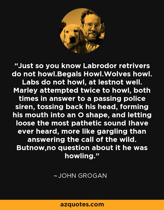 Just so you know Labrodor retrivers do not howl.Begals Howl.Wolves howl. Labs do not howl, at lestnot well. Marley attempted twice to howl, both times in answer to a passing police siren, tossing back his head, forming his mouth into an O shape, and letting loose the most pathetic sound Ihave ever heard, more like gargling than answering the call of the wild. Butnow,no question about it he was howling. - John Grogan