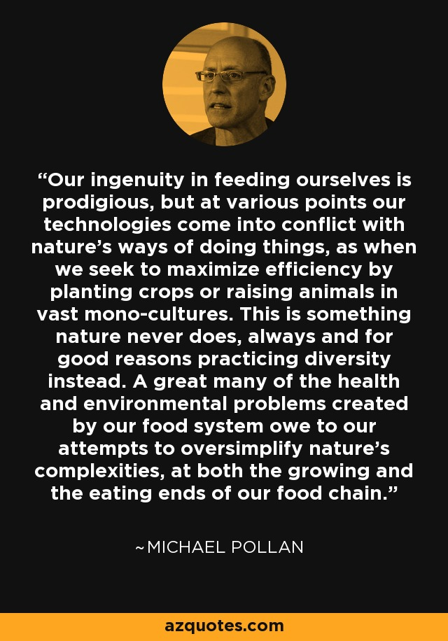 Our ingenuity in feeding ourselves is prodigious, but at various points our technologies come into conflict with nature's ways of doing things, as when we seek to maximize efficiency by planting crops or raising animals in vast mono-cultures. This is something nature never does, always and for good reasons practicing diversity instead. A great many of the health and environmental problems created by our food system owe to our attempts to oversimplify nature's complexities, at both the growing and the eating ends of our food chain. - Michael Pollan