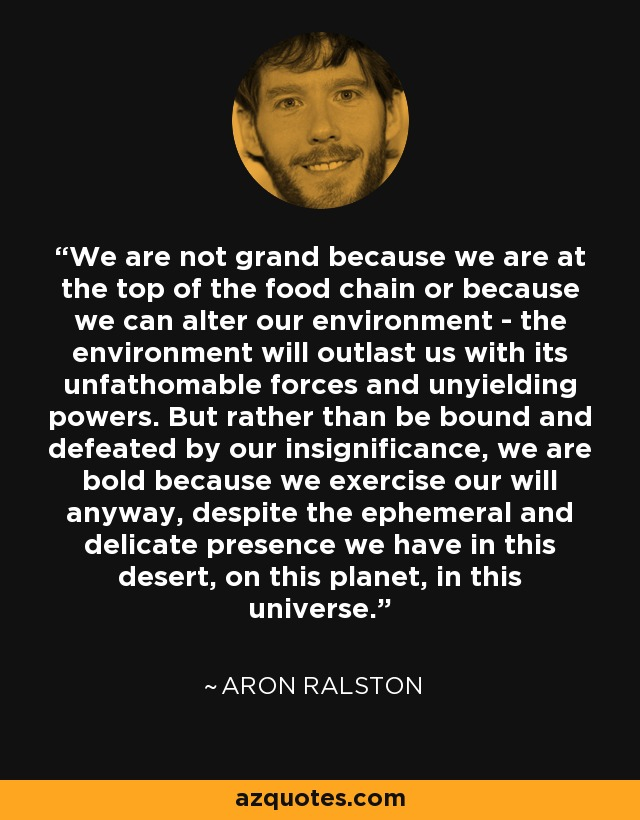 We are not grand because we are at the top of the food chain or because we can alter our environment - the environment will outlast us with its unfathomable forces and unyielding powers. But rather than be bound and defeated by our insignificance, we are bold because we exercise our will anyway, despite the ephemeral and delicate presence we have in this desert, on this planet, in this universe. - Aron Ralston