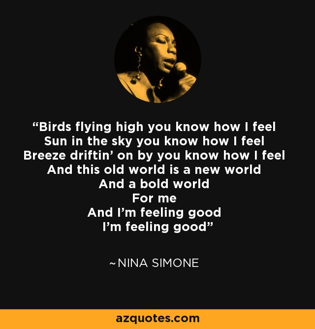 Nina Simone quote: Birds flying high you know how I feel ... - photo#8