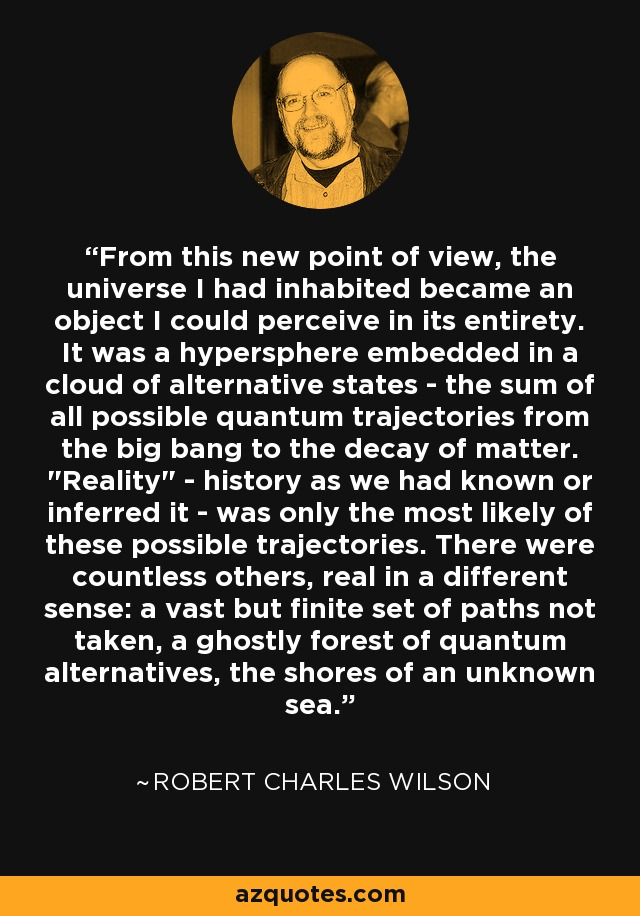 From this new point of view, the universe I had inhabited became an object I could perceive in its entirety. It was a hypersphere embedded in a cloud of alternative states - the sum of all possible quantum trajectories from the big bang to the decay of matter.