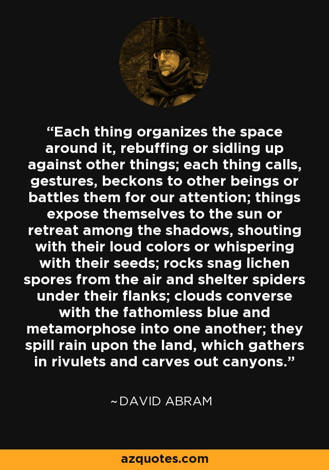 Each thing organizes the space around it, rebuffing or sidling up against other things; each thing calls, gestures, beckons to other beings or battles them for our attention; things expose themselves to the sun or retreat among the shadows, shouting with their loud colors or whispering with their seeds; rocks snag lichen spores from the air and shelter spiders under their flanks; clouds converse with the fathomless blue and metamorphose into one another; they spill rain upon the land, which gathers in rivulets and carves out canyons. - David Abram