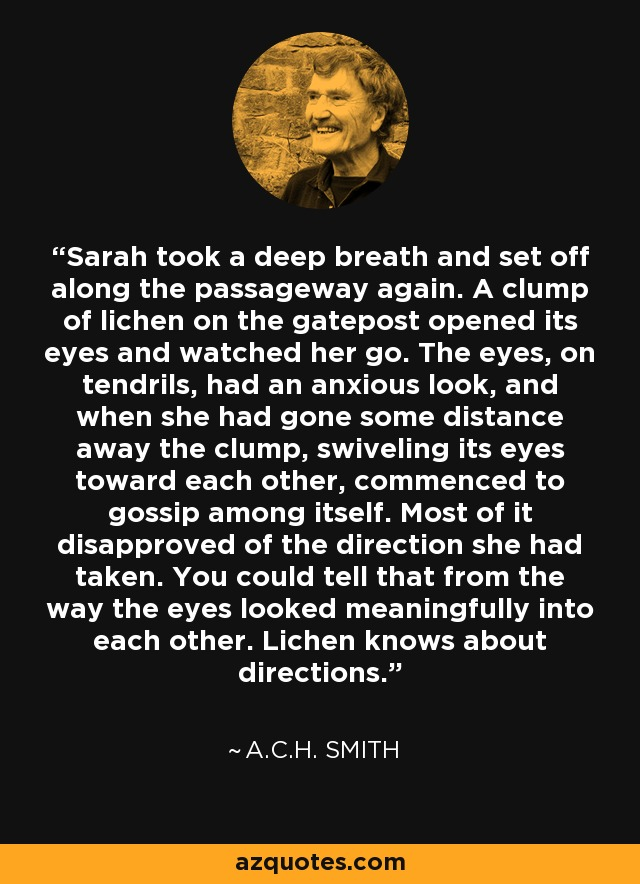 Sarah took a deep breath and set off along the passageway again. A clump of lichen on the gatepost opened its eyes and watched her go. The eyes, on tendrils, had an anxious look, and when she had gone some distance away the clump, swiveling its eyes toward each other, commenced to gossip among itself. Most of it disapproved of the direction she had taken. You could tell that from the way the eyes looked meaningfully into each other. Lichen knows about directions. - A.C.H. Smith
