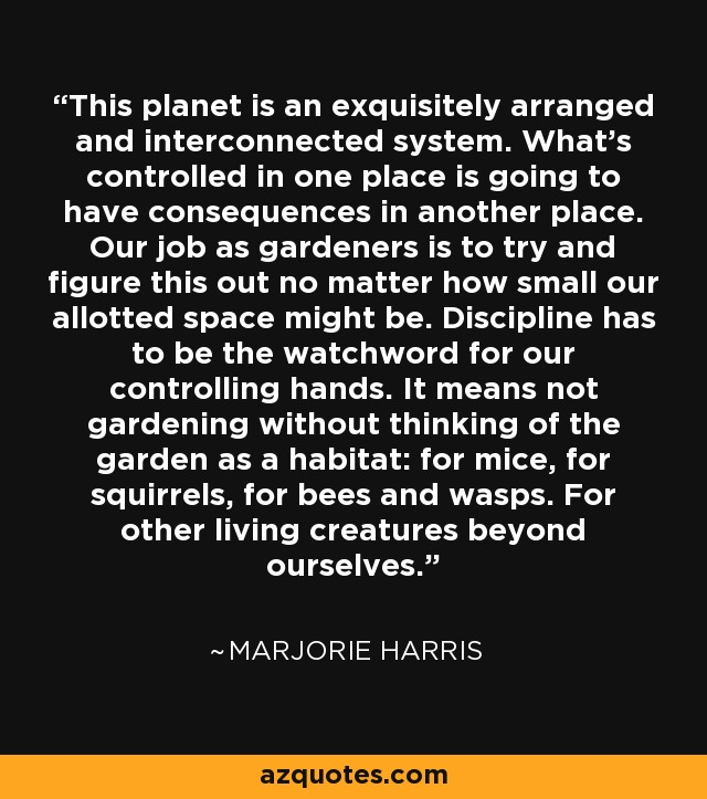 This planet is an exquisitely arranged and interconnected system. What's controlled in one place is going to have consequences in another place. Our job as gardeners is to try and figure this out no matter how small our allotted space might be. Discipline has to be the watchword for our controlling hands. It means not gardening without thinking of the garden as a habitat: for mice, for squirrels, for bees and wasps. For other living creatures beyond ourselves. - Marjorie Harris