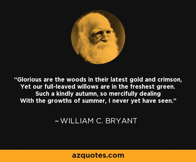 Glorious are the woods in their latest gold and crimson, Yet our full-leaved willows are in the freshest green. Such a kindly autumn, so mercifully dealing With the growths of summer, I never yet have seen. - William C. Bryant