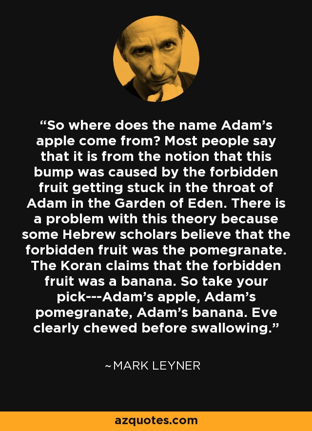 So where does the name Adam's apple come from? Most people say that it is from the notion that this bump was caused by the forbidden fruit getting stuck in the throat of Adam in the Garden of Eden. There is a problem with this theory because some Hebrew scholars believe that the forbidden fruit was the pomegranate. The Koran claims that the forbidden fruit was a banana. So take your pick---Adam's apple, Adam's pomegranate, Adam's banana. Eve clearly chewed before swallowing. - Mark Leyner