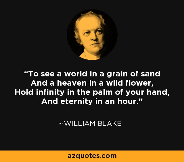 To see a world in a grain of sand And a heaven in a wild flower, Hold infinity in the palm of your hand, And eternity in an hour. - William Blake