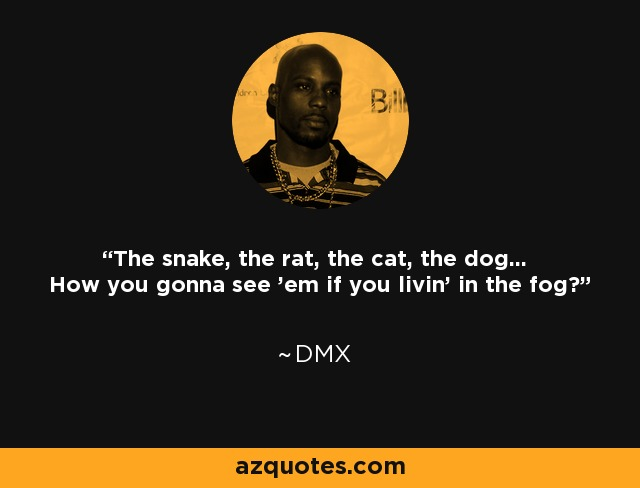 The snake, the rat, the cat, the dog... How you gonna see 'em if you livin' in the fog? - DMX